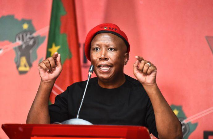 EFF Turns 8, Malema Dismisses Insurrection