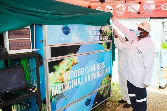 Premier Makhura Promotes High-End Cannabis Factory